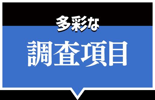 日本探偵社名古屋本部の調査項目